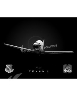 Jet Black T-6 Hawgs Flight 84 FTS 47 FTW SP00776-FEAT-jet-black-aircraft-lithograph