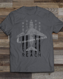 ts-24-flag-dark-reach-c-17-featured-image