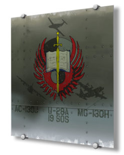 The19th Special Operations Squadronis anAir Force Special Operations Commandunit, part of the492nd Special Operations WingatHurlburt Field, Florida.