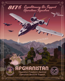 817th Expeditionary Air Support Operations Squadron