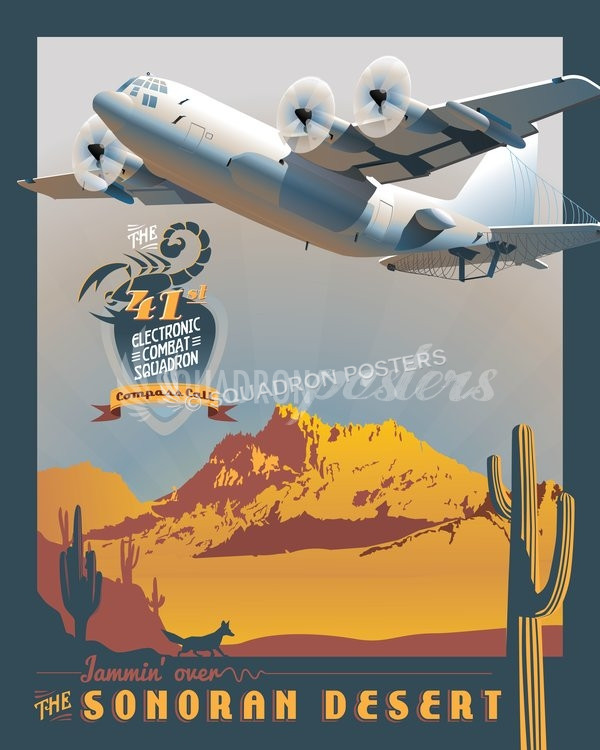 41st Electronic Combat Squadron