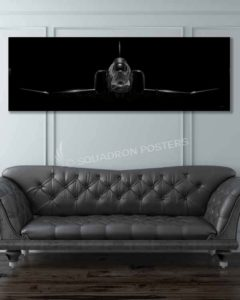 F-4 Phantom Jet Black Lithos