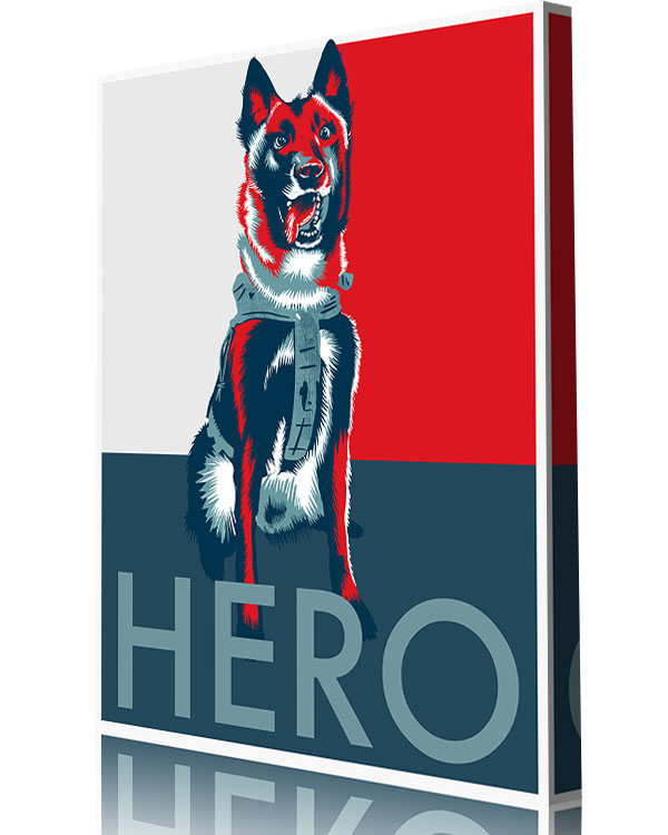 hero dog