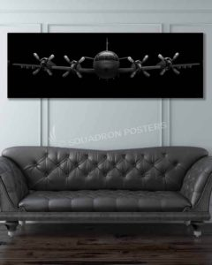 P-3 Orion Jet Black Lithos