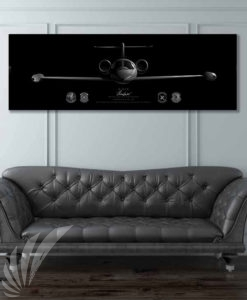Jet_Black_C-21_457th_AS_60x20_FINAL_Max_Shirkov_SP01575military-air-force-aviation-artwork-poster-jet-black-litho