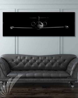 Jet_Black_C-21_60x20_generic_Max_Shirkov_SP01538-military-air-force-aviation-artwork-poster-jet-black-litho